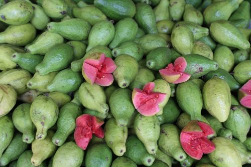 guava benefits side effects